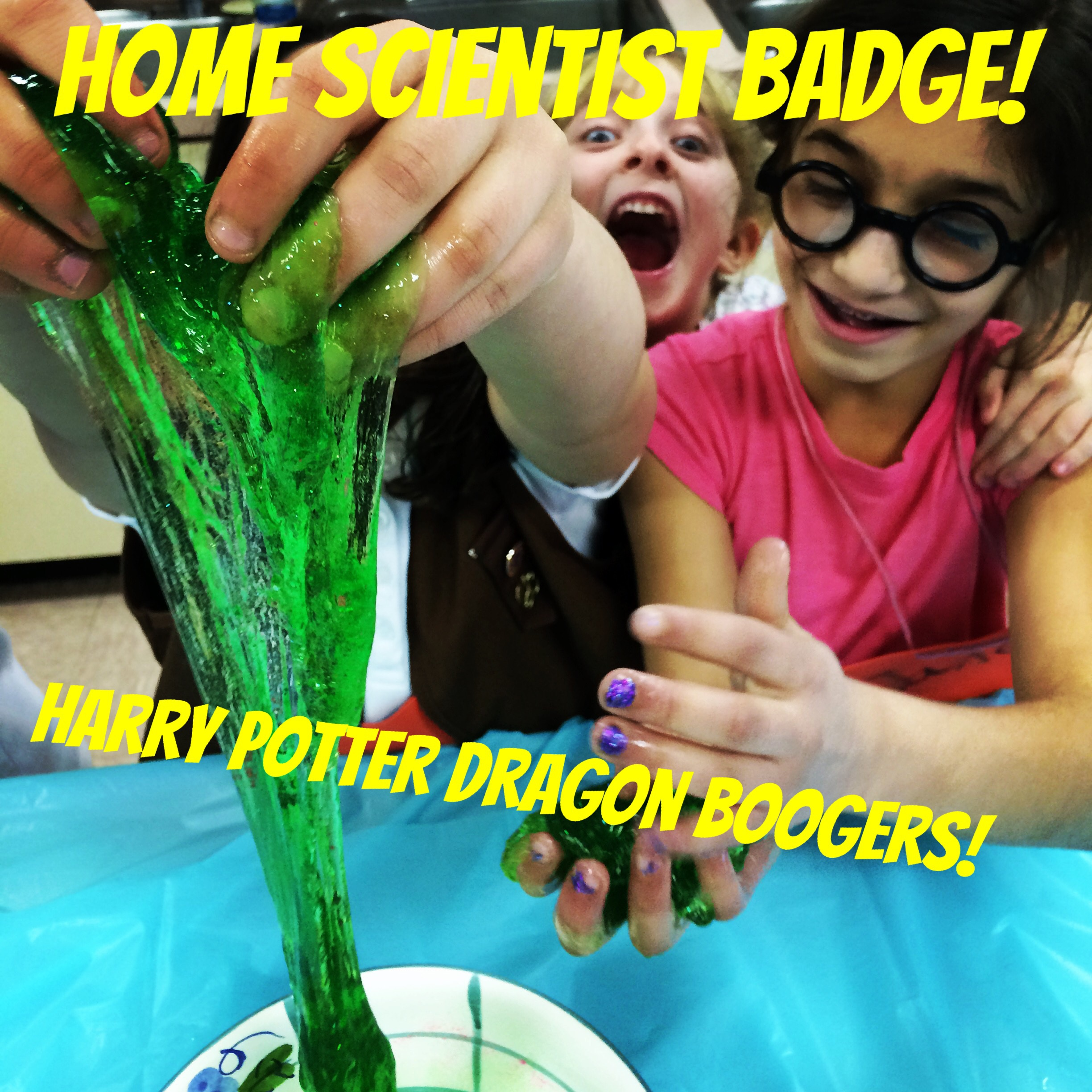 Cupcakes and Lace » Girl Scout Home Scientist Brownie Badge ...