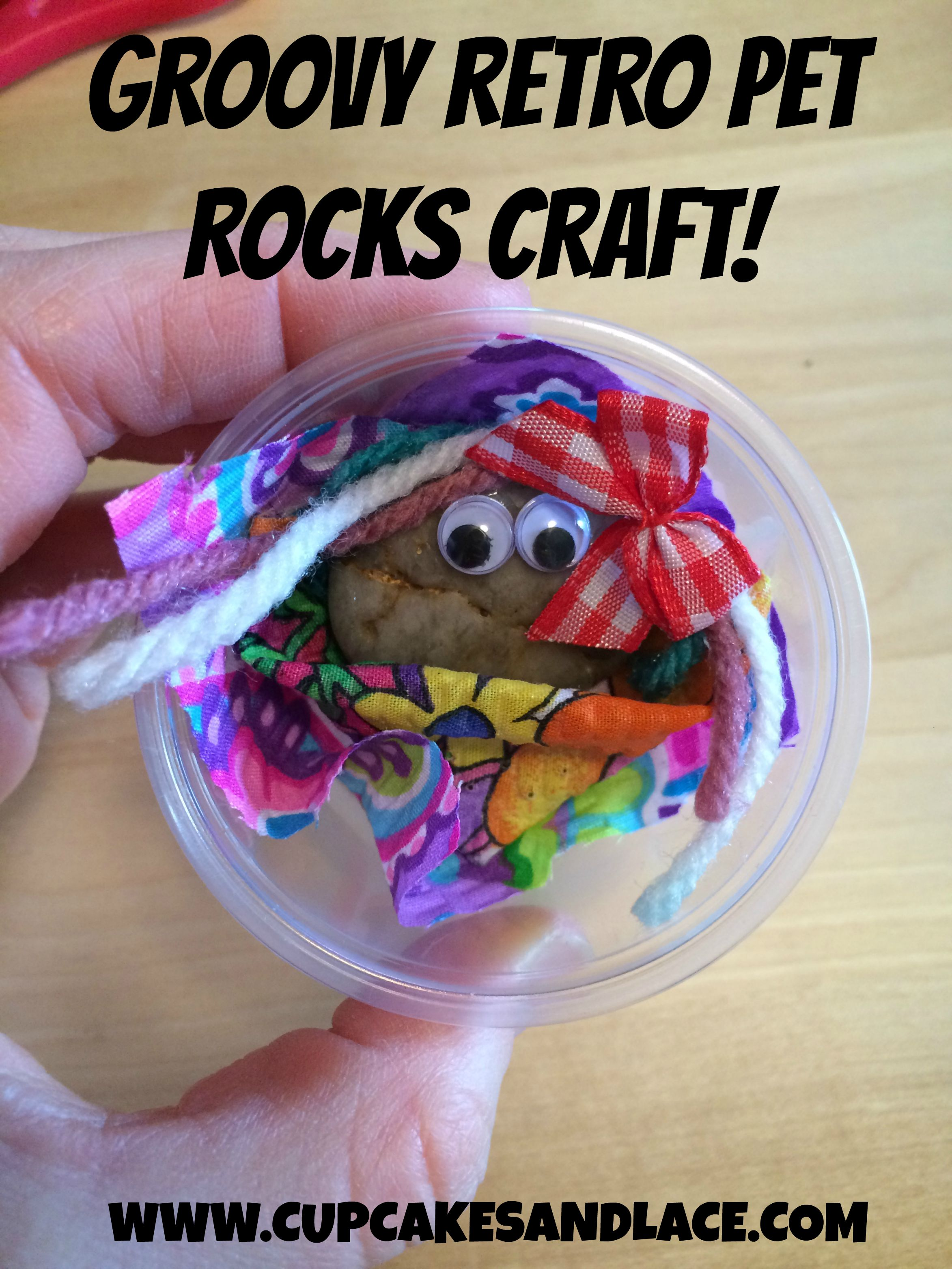 Groovy Pet Rock Craft Project Great Girl Scout Craft And Journey